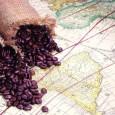 Deși istoria cafelei își are rădăcinile nu mai departe de secolul al XIII-lea, originile ei rămân o necunoscută.