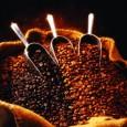 Continuăm povestea cafelei, concentrându-ne acum pe răspândirea ei în America şi, în plus, o informaţie despre yerba mate, prima specie de cafea din America de Sud Gabriel de Clieu a...