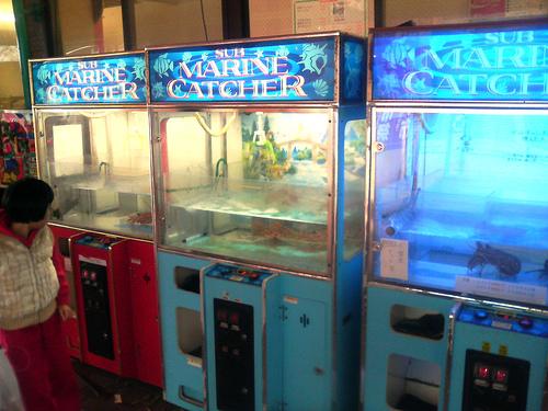 Automat cu homari vii, interzis la un restaurant din Massachusetts