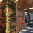 AVT, Inc. a anunțat recent că instalarea noului lor kiosk automat cu suc de fructe proaspăt stors în Kreation Juicery din Beverly Hills, California s-a încheiat. Conform declarației AVT, proprietarul...