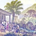 Sclavia pe plantațiile de cafea – o istorie adevărată (2) De la începuturile sale obscure din Africa de Est a secolului al XV-lea unde era folosită ca un stimulent al...