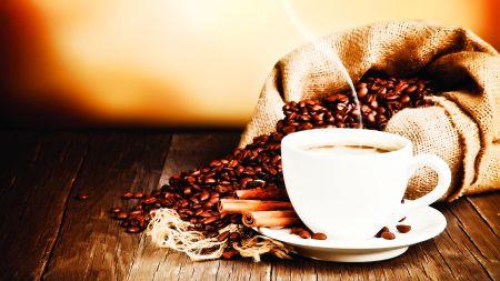 Povestea Cafelei 16