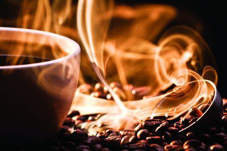 Povestea Cafelei 17