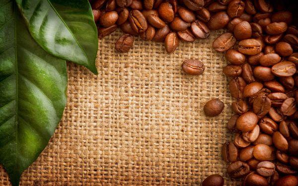 Producția de cafea columbiană termină anul 2017 cu 14,2 milioane de saci