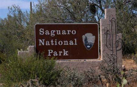 Parcul Național Saguaro interzice sticlele de plastic în automate